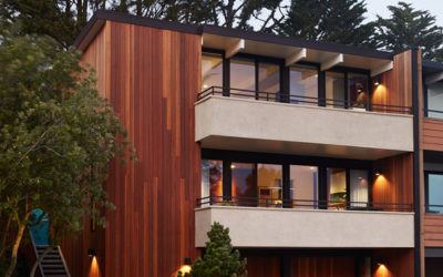 Architecture Art and Design featured our San Francisco Eichler Remodel