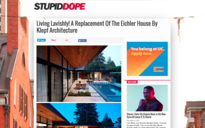 Stupid Dope featured our Glass Wall House